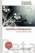 Schefflera Marlipoensis