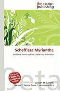 Schefflera Myriantha
