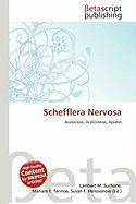 Schefflera Nervosa