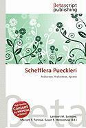 Schefflera Pueckleri