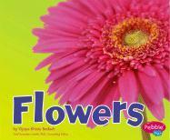 Flowers - Bodach, Vijaya