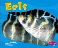 Eels - Rake, Jody Sullivan